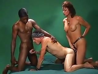 Horny Bisexual Boy Has Fun With A Buxom Cougar And A Black Stallion